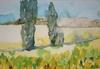 Provence fields