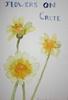 Flowers on Crete